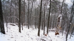 Hot Springs Mountain Trail Snow