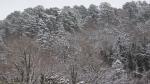 Hot Springs Mountain Snow