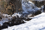 Hot Springs National Park Gulpha Creek Snow