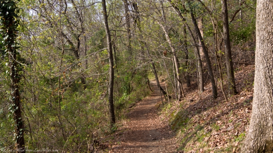 HSNP West Mountain Oak Trail