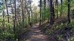 Hot Springs National Park Peak Trail Spring