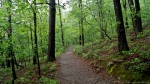 HSNP Hot Springs Mountain Trail Earth Day