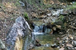 HSNP Hot Springs Mountain Road Creek