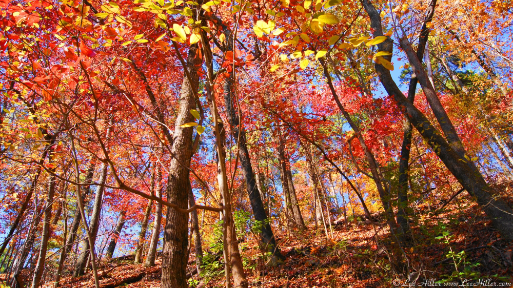 Hit The Trails in Hot Springs National Park All Year Round Outdoors