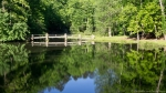 HSNP Fordyce Estate Ricks Pond Spring Stone Bridge