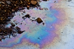 Hot Springs City Desoto Park Creek Oil Pollution