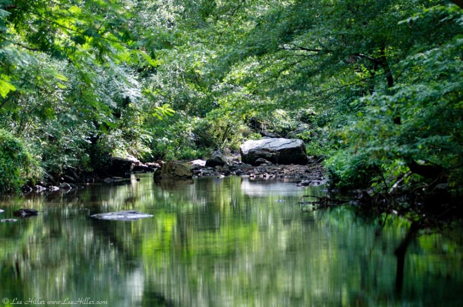 HSNP Gulpha Gorge Campground Creek