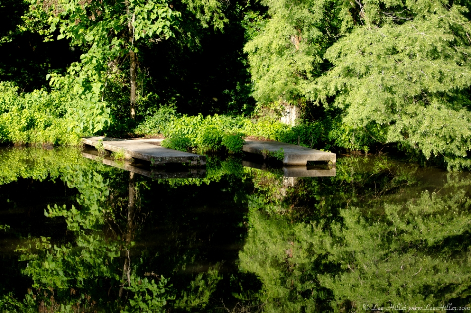 HSNP Fordyce Estate Ricks Pond