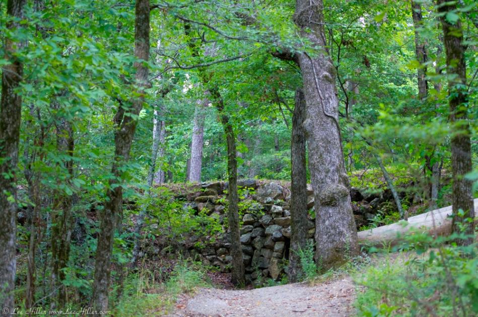 HSNP Peak Trail Summer