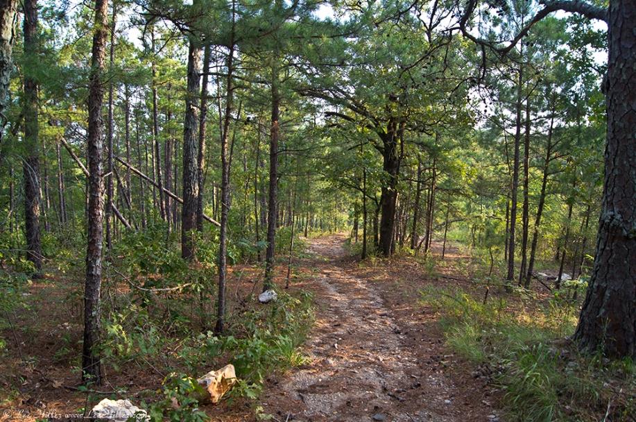 HSNP Sunset Trail Sec1 Summer