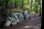 HSNP Short Cut Trail After A Summer Rain