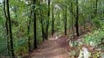 HSNP Short Cut Trail After the Summer Rain