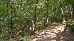 HSNP West Mt Oak Trail Summer