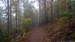 HSNP Hot Springs Mountain Trail Autumn Fog