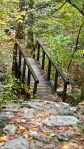 Lake Catherine Sate Park Branch Falls Trail Bridge
