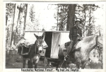 Deschutes National Forest - My Dad the Ranger