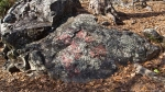 HSNP Hot Springs mountain Trail Graffiti on Rocks