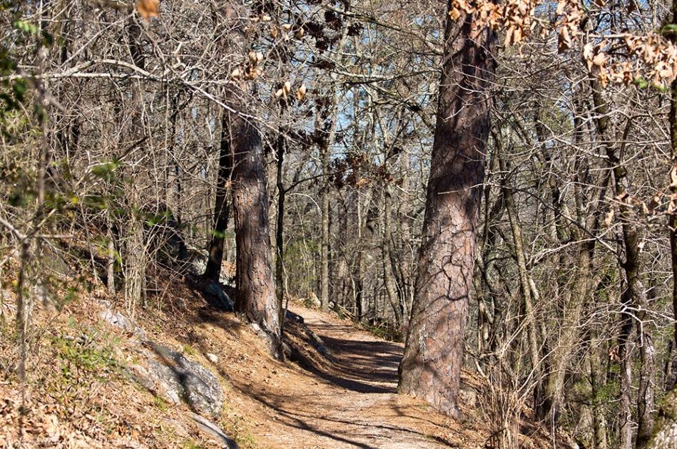 HSNP Hot Springs Mt. Trail Winter