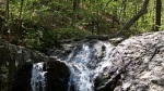 LCSP Falls Branch Trail Waterfall