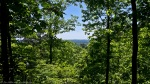 HSNP Hot Springs Mountain Trail View of Ozarks