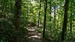 HSNP Honeysuckle Trail Spring