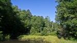 HSNP Fordyce Ricks Pond Spring