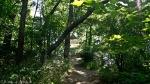 HSNP Hot Springs Mountain Trail Pagoda