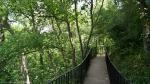 HSNP Tufa Terrace Trail Spring
