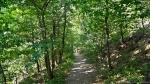 HSNP Lower Dogwood Trail Spring