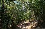 HSNP Peak Trail Spring Twilight