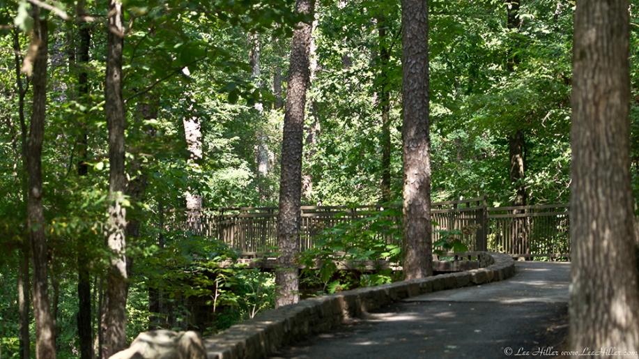 Garvan Woodland Gardens Arkansas Canopy Bridge