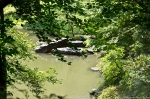 Garvan Woodland Gardens Arkansas Pond