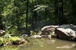 Garvan Woodland Gardens Arkansas Rock Pool