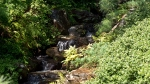 Garvan Woodland Gardens Arkansas Waterfall Rocks