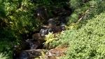 Garvan Woodland Gardens Arkansas Waterfall Rocks