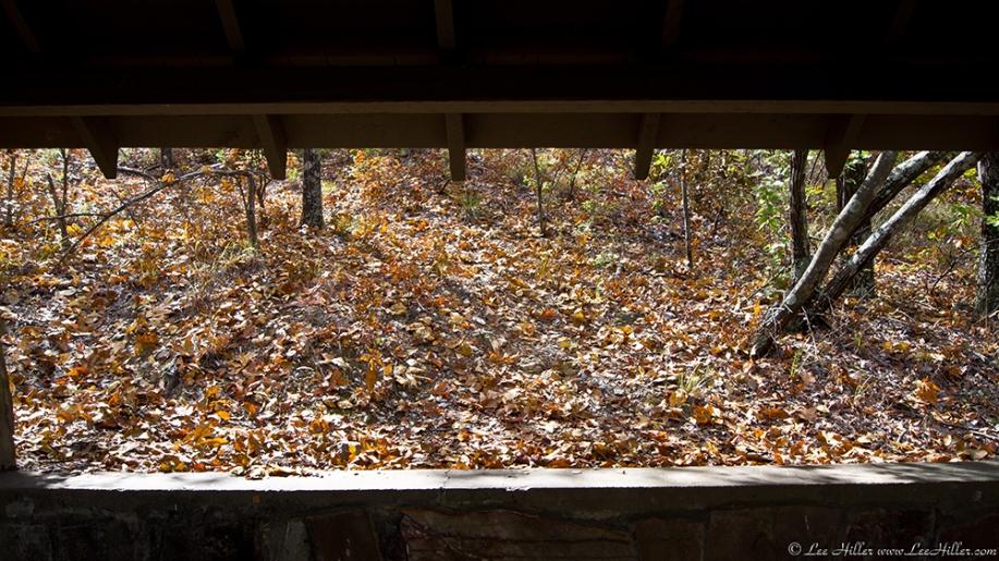 HSNP Honeysuckle Trail Hikers Hut (Wedding Chapel) View
