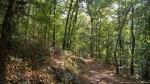HSNP Short Cut Trail Summer