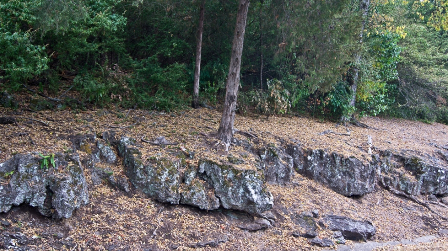 HSNP Carriage Road Rock Outcropping