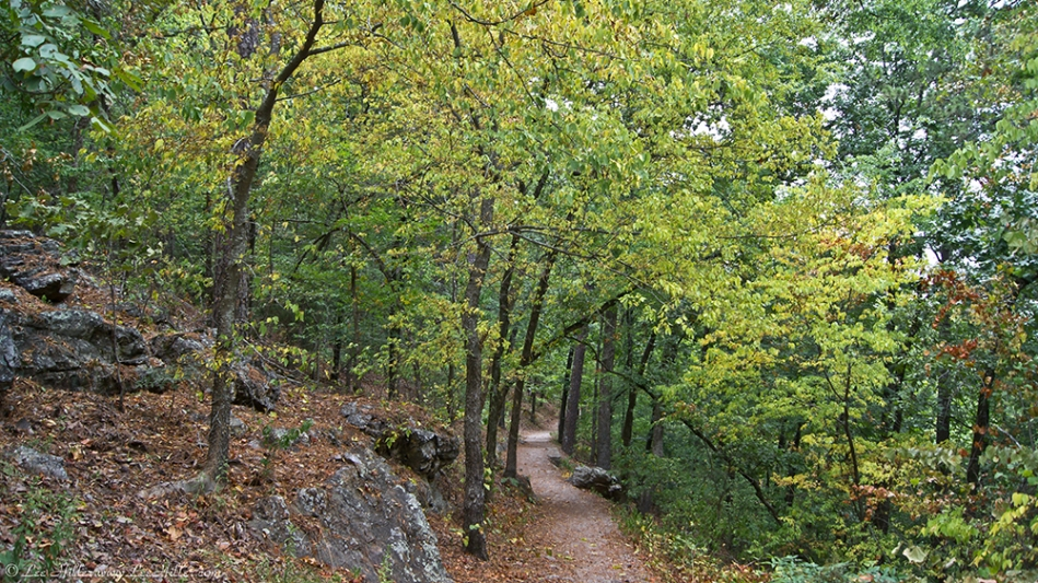 HSNP Hot Springs Mountain Trail