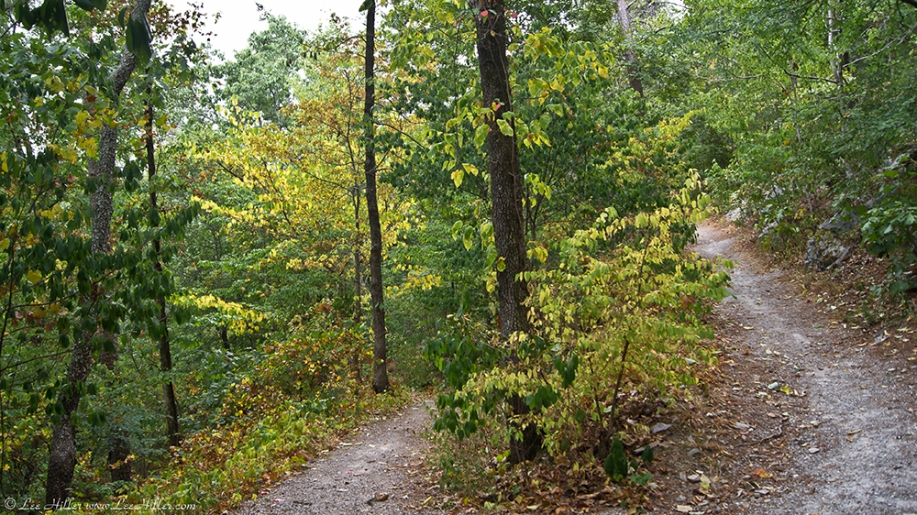 HSNP Lower and Upper Dogwood Trails