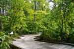 Garvan Gardens Hixson Family Woodland Nature Preserve Lowland Boardwalk
