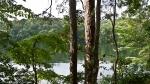 Garvan Gardens Hixson Family Woodland Nature Preserve Lake Hamilton
