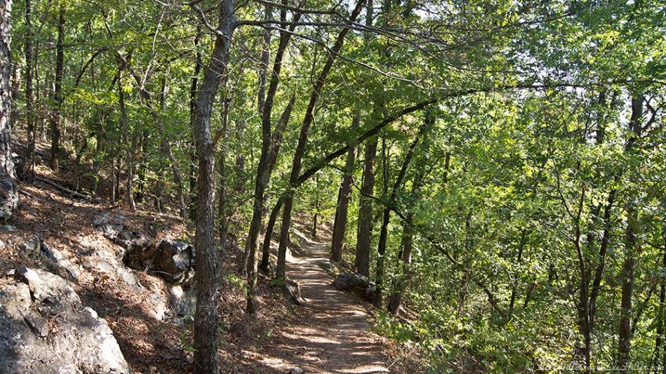 HSNP Hot Springs Mt Trail