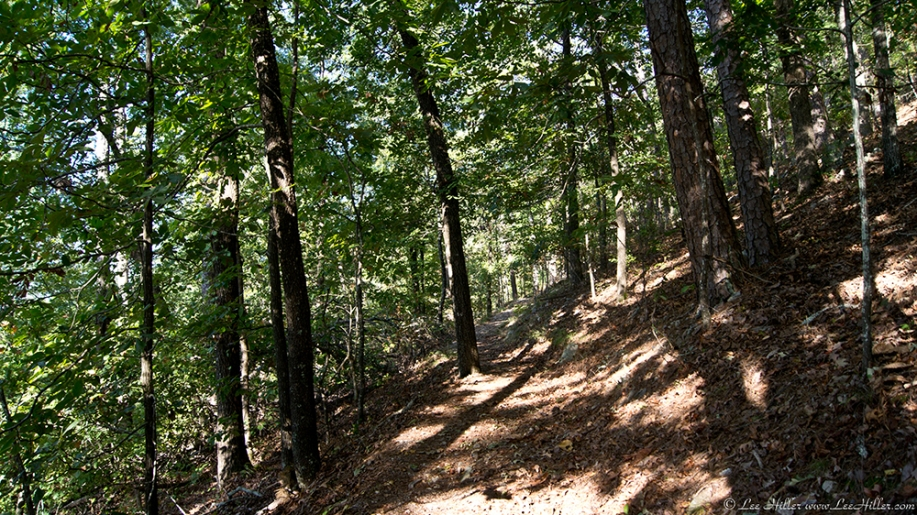HSNP West Mt. Oak Trail