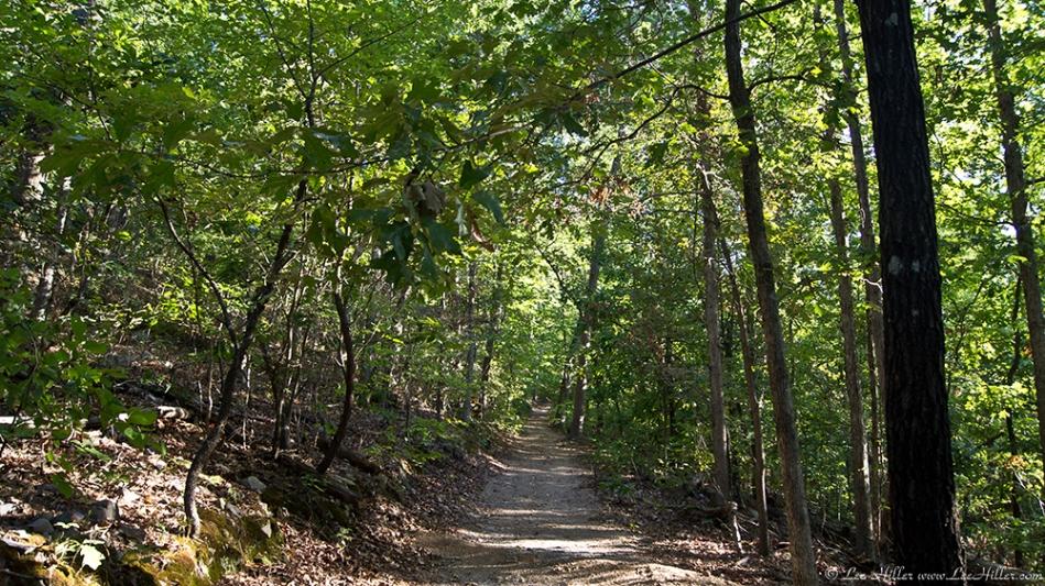 HSNP Lower Dogwood Trail