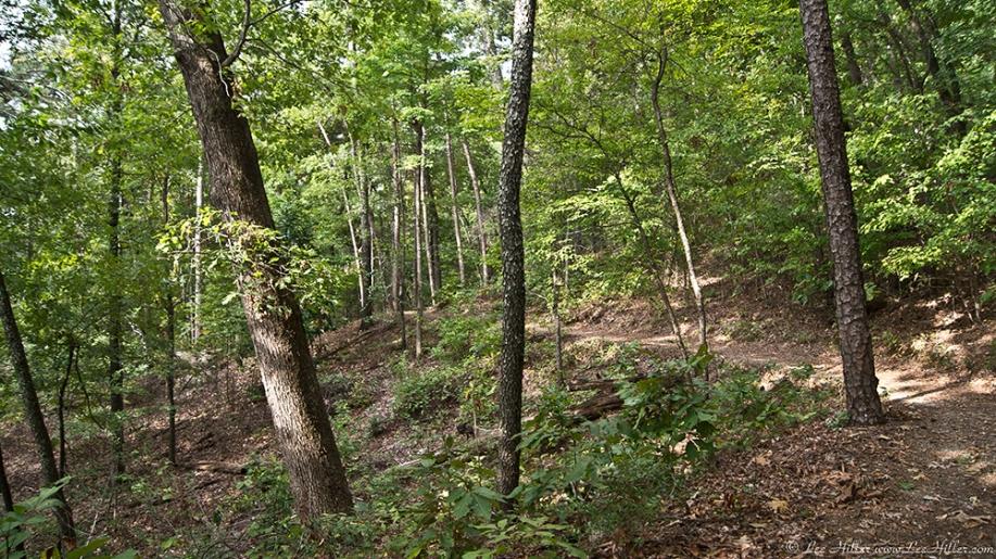 HSNP West Mt Oak Trail