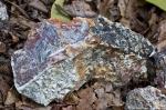 HSNP West Mt Trail Colorful Rock
