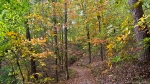 HSNP Hot Springs MT Trail Autumn