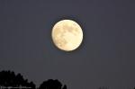 HSNP Hot Springs Mountain Moon Rise