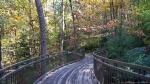 Garvan Woodland Gardens Canopy Bridge